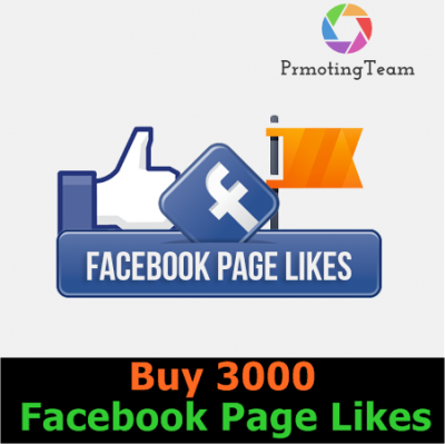 Buy 3000 Facebook Page Likes